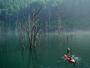 自然湖ネイチャーカヌー