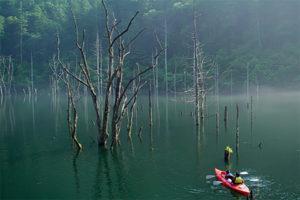 nature_canoe_960_2