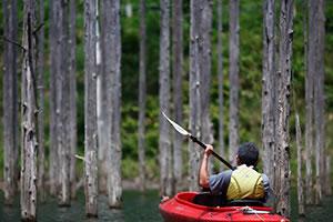 自然湖ネイチャーカヌーツアー