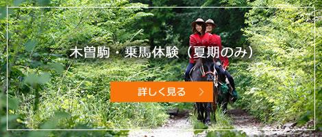 木曽駒・乗馬体験(夏期のみ)