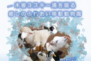 木曽3スキー場を廻る癒しのふれあい移動動物園 New!
